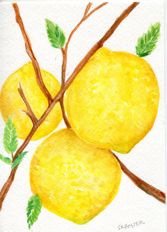 3 Lemons on tree Watercolors Paintings original, Fruit painting 5 x 7, original watercolor of lemons on a tree, lemon decor, SharonFosterArt