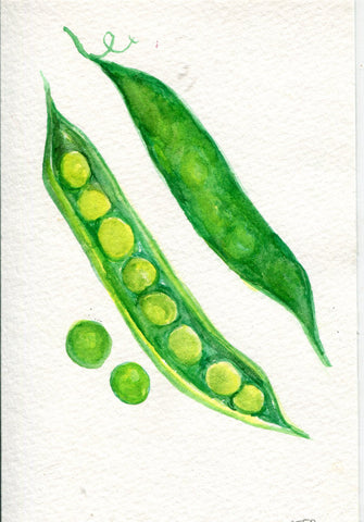 English Peas watercolor painting, Original art, vegetable home decor, kitchen wall art, SharonFosterArt Farmhouse Decor