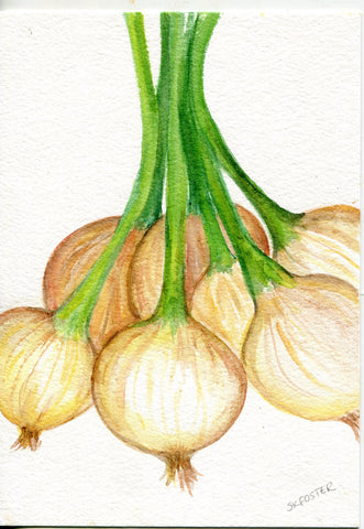 Bunch of Spring Onions watercolor painting original.  kitchen decor, spring onions culinary , small vegetable wall art 5 x 7