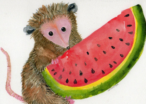 8 x 10 Possum Print of My Original Possum with Watermelon Watercolor Painting, Opossum Art,