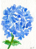 ACEO Original Blue Hydrangea Watercolor Painting, Flower Art Card, small watercolor painting of blue hydrangea, SharonFosterArt