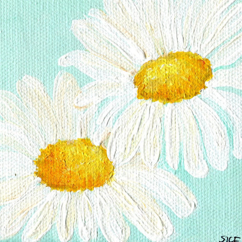 Shasta Daisies Handmade Acrylic Painting on Light Aqua Original  canvas 4 x 4, white Shasta daisies, small art, acrylic painting canvas art