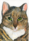 Tabby Cat Watercolor Painting original, small cat art, original watercolor painting of tabby cat, kitty cat artwork 5 x 7, cat portait