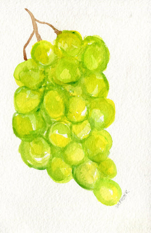 Grapes watercolor painting original 4 x 6, Fruit artwork. original watercolor art of green grapes, kitchen decor, grapes illustration
