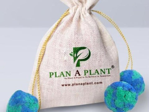 Plant Bombs (Pack Of 10)