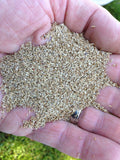 Bentgrass Seeds - treekart  - 3