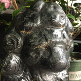 Antique Black Stone Lion Foo Dogs - A Pair - FREE SHIPPING!