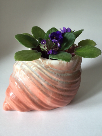 Cottage Style Shell Planter - FREE SHIPPING!