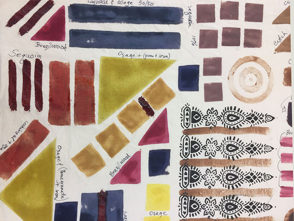 Print & Paint with Natural Dyes