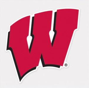 Wisconsin Badgers Decal