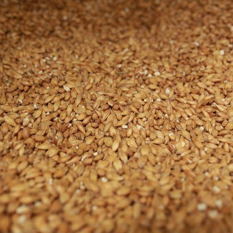 Weyermann Acidulated Acid Malt