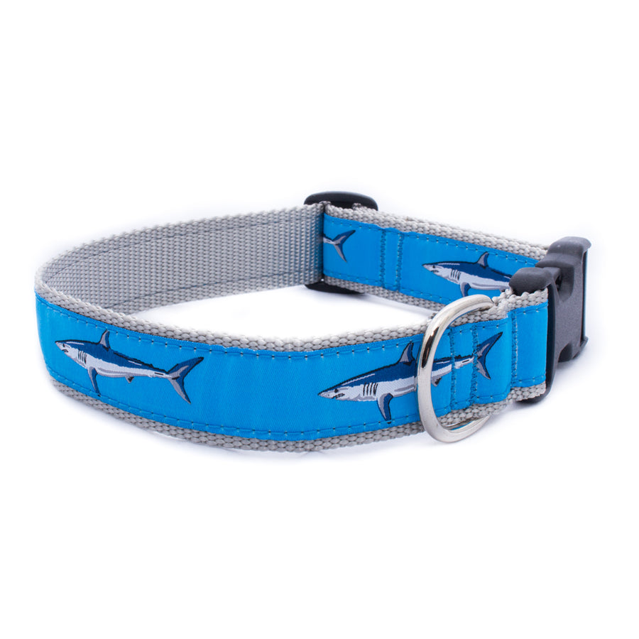Light Blue Mako Shark Ribbon Dog Collar