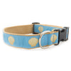 Light Blue Scallop Shell Ribbon Dog Collar