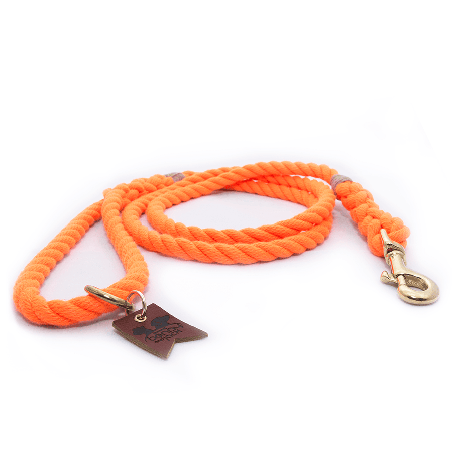 Orange Harbor Three Strand Rope Dog Leash