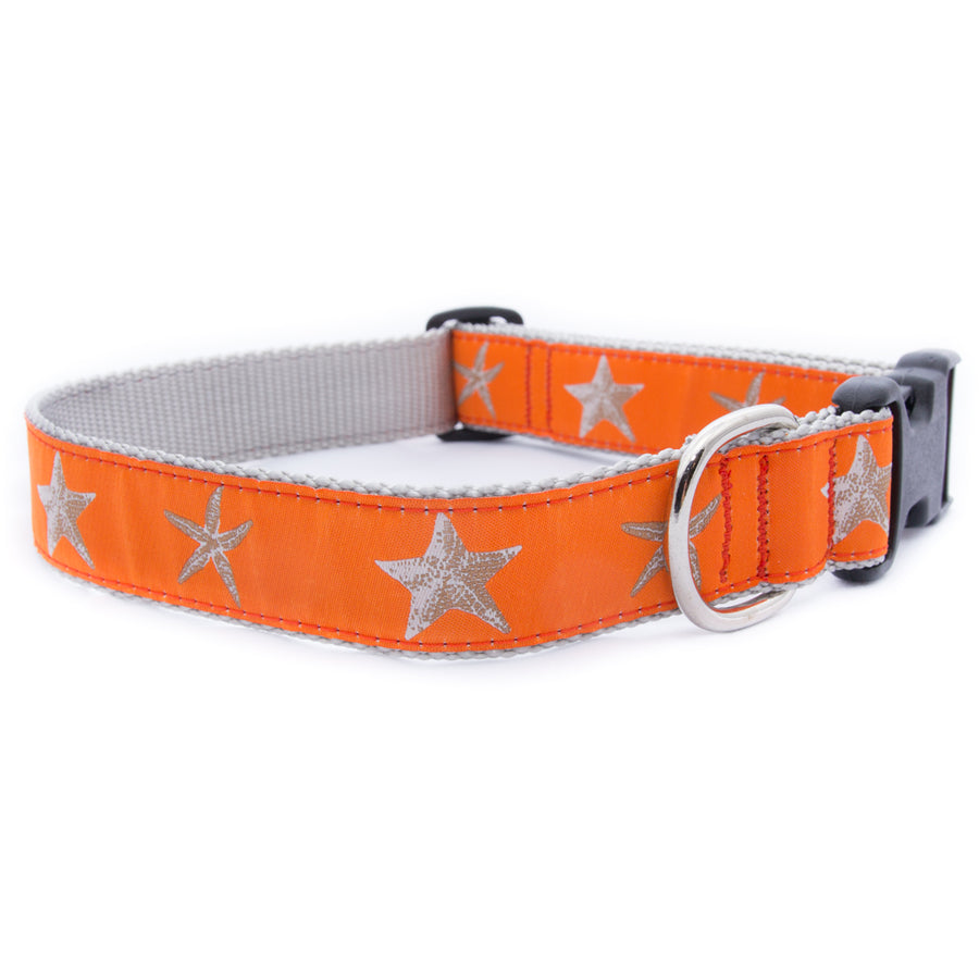 Orange Starfish Ribbon Dog Collar