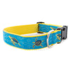 Sea Turtle Ribbon Dog Collar