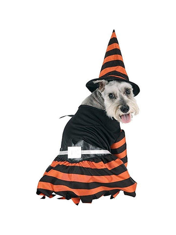 Halloween Witch Dog Costume-COSTUMEISH