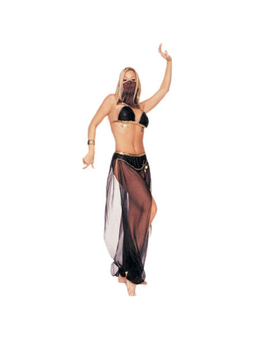 Adult Sexy Harem Dancer Costume-COSTUMEISH