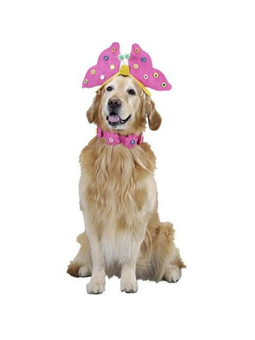 Butterfly Dog Costume-COSTUMEISH