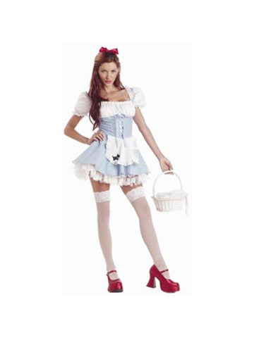 Adult Dorothy Storybook Costume