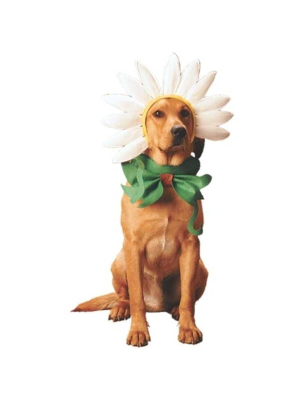 Dogs Daisy Costume-COSTUMEISH