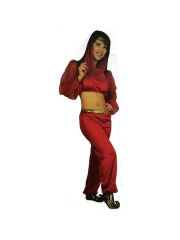 Adult Fashion Harem Girl Costume