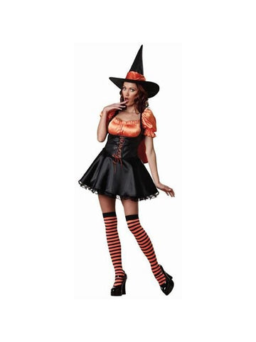 Adult Wicked Witch Costume-COSTUMEISH