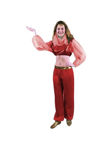 Child's Fashion Harem Dancer Costume