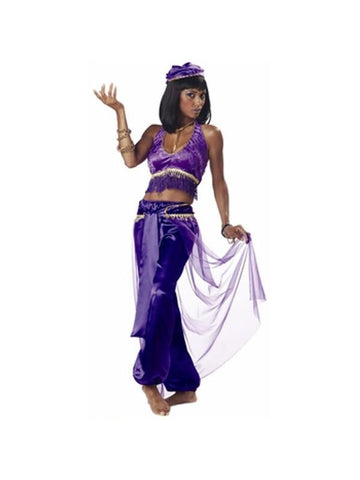 Adult Purple Belly Dancer Costume