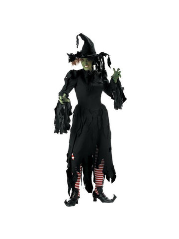 Adult Tattered Witch Costume