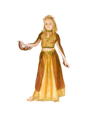 Childs Belly Dancer Costume