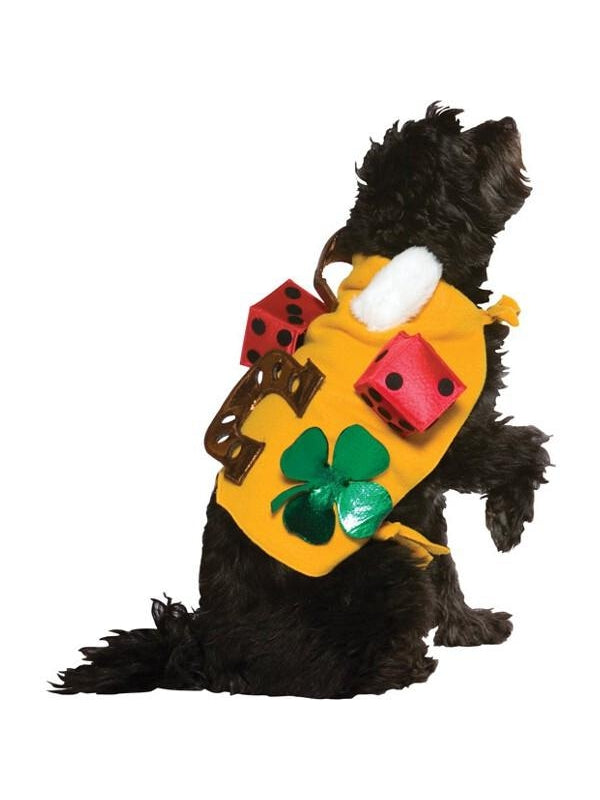 Lucky Dog Costume-COSTUMEISH