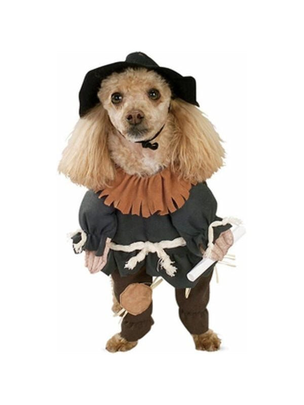 Wizard of Oz Scarecrow Dog Costume-COSTUMEISH