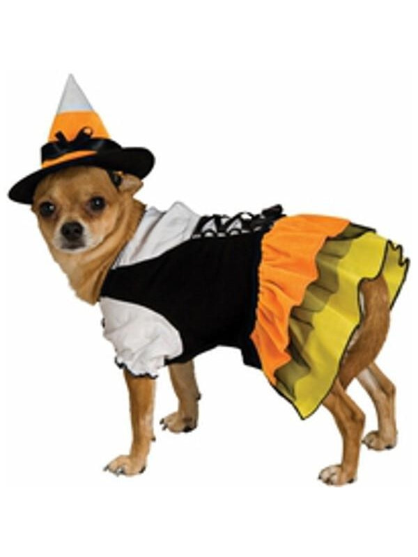 Candy Corn Witch Dog Costume-COSTUMEISH