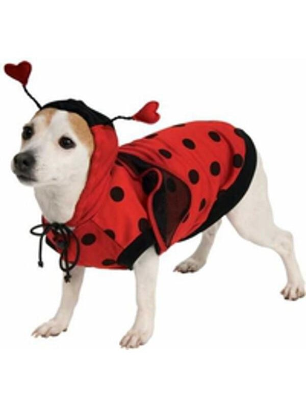 Lady Bug Dog Costume-COSTUMEISH