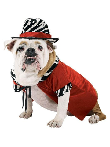 Red Pimp Dog Costume-COSTUMEISH
