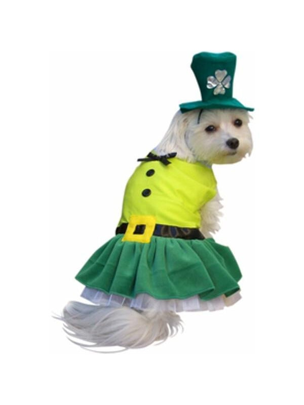Leprechaun Girl Dog Costume-COSTUMEISH