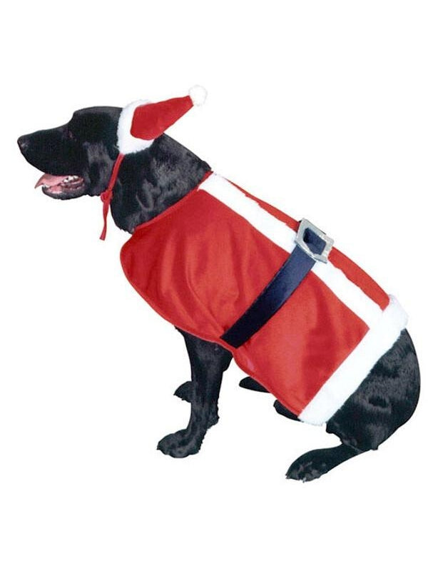 Doggie Santa Claus Pet Costume-COSTUMEISH