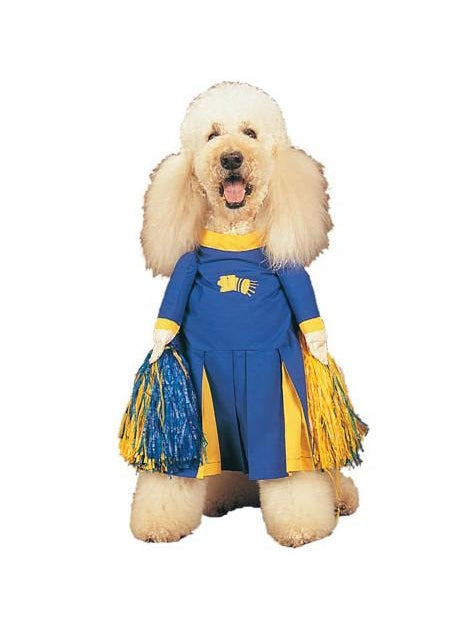 Cheerleader Dog Costume-COSTUMEISH
