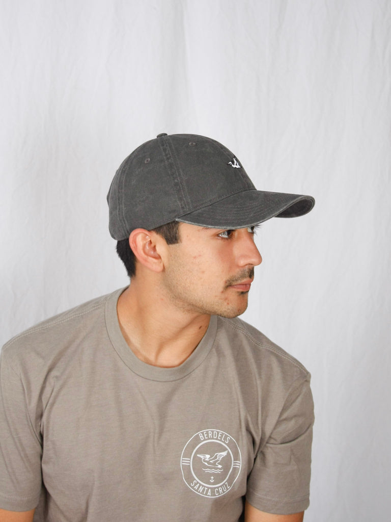 Berdels Basic Berd Dad Hat Charcoal