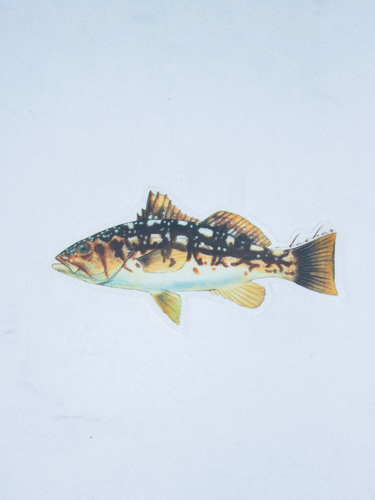 Abachar Calico Bass Sticker