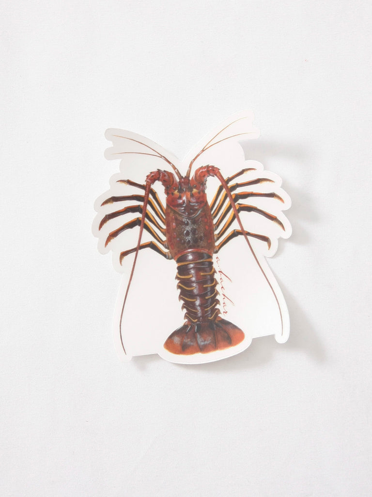 Abachar Cali Lobster Sticker