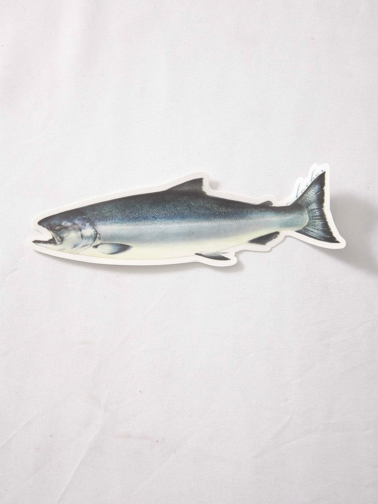 Abachar King Salmon Sticker
