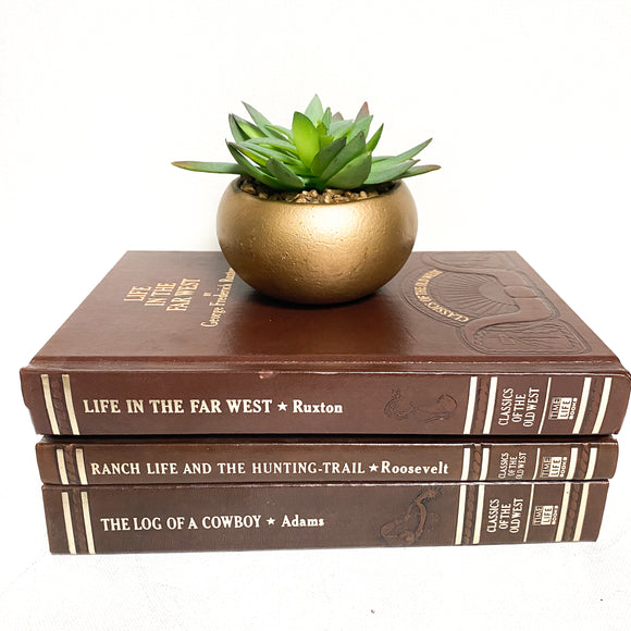 Classics of the Old West Vintage Book Set, Theodore Roosevelt and more