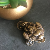 Vintage solid brass money frog / toad