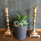 Vintage Brass Candlesticks Large Pair of Two