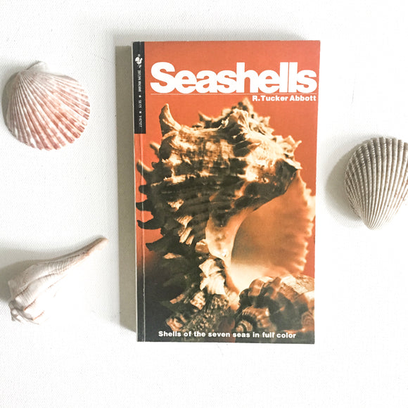 Vintage Seashells Nature Guide Book