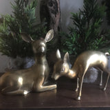 Brass Deer Large Pair with Mom and Fawn