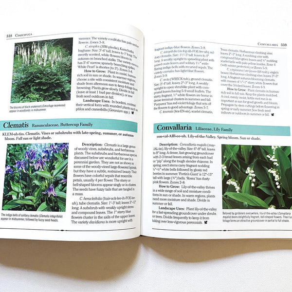 Rodale's Illustrated Encyclopedia of Perennials, Vintage Gardening Reference Book