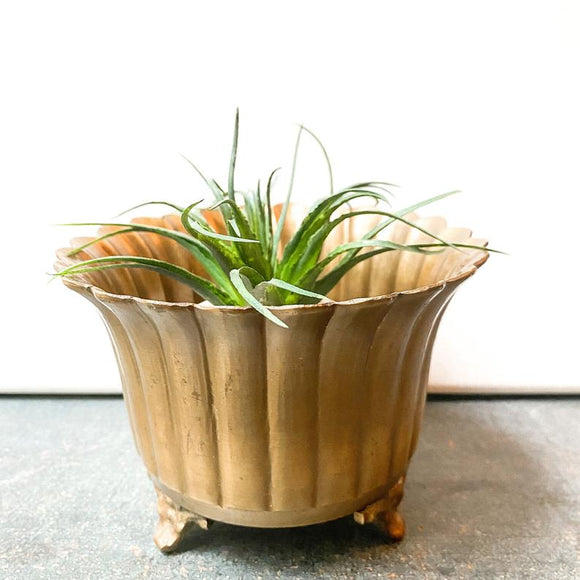 Art Deco Planter, Vintage Brass, Small Garden Pot